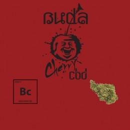 3G BUDA CHERRY FLOWERS