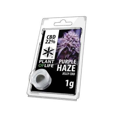 22% JELLY 1G PURPLE HAZE