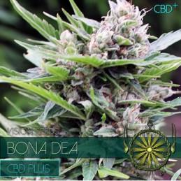 BONA DEA CBD 3 MED SEEDS -...