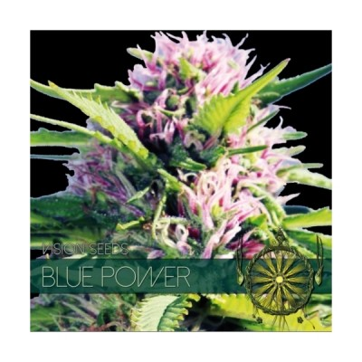Blue Power FEM 5 Seeds –...