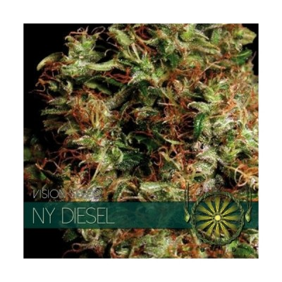 NY Diesel FEM 5 Seeds – Vision