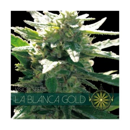 LA BLANCA GOLD 3 AUTO SEEDS...