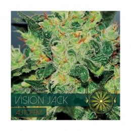 Jack Auto 5 Seeds – Vision
