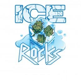 ICE ROCK CBD BLÜTEN BULK 0,2%