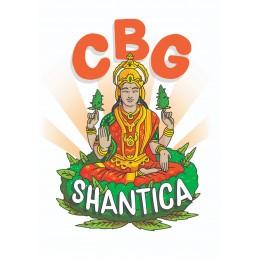 SANTHICA CBG FLOWERS BULK 0.2%
